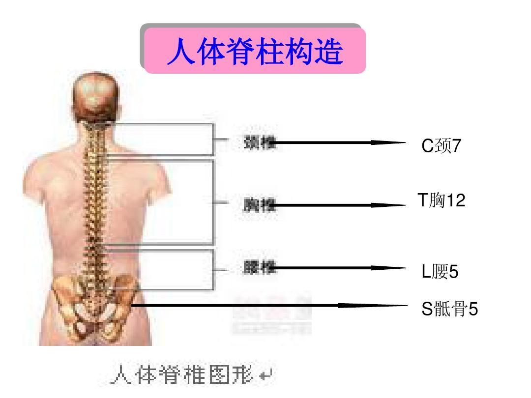 尋找正確健康走路跑步姿勢,從源頭杜絕腰椎病發生,五個絕招教你圖片