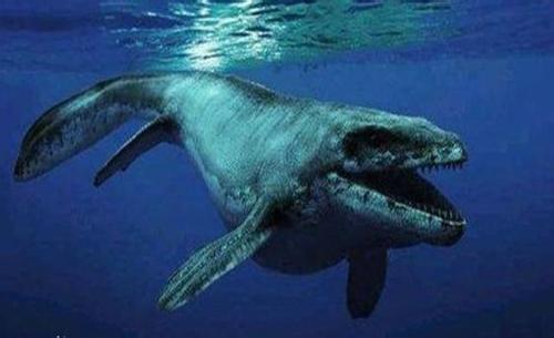 地球遠古海洋中的霸主,比鯊魚要大要兇狠,被它抓到死圖片