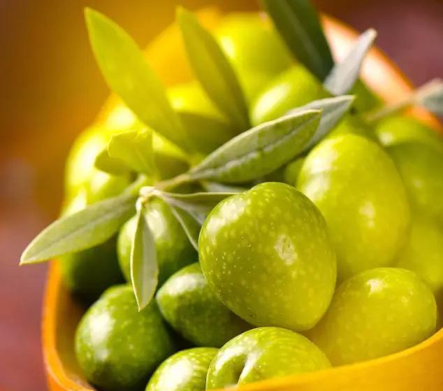 橄榄果的作用_橄榄果富含钙质和维生素c.对人体有很大的作用.
