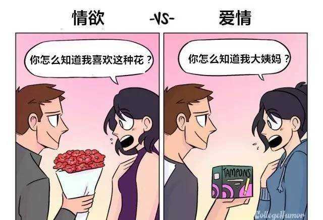 丝袜情欲乱价_在男女关系中,情欲和爱情的区别是