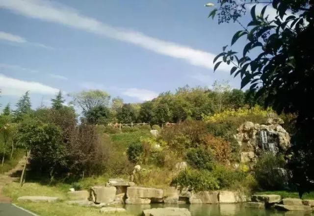"""西霞院景區的全稱是""""西霞院反調節水庫風景區"""",位于黃河小浪底水利樞"""