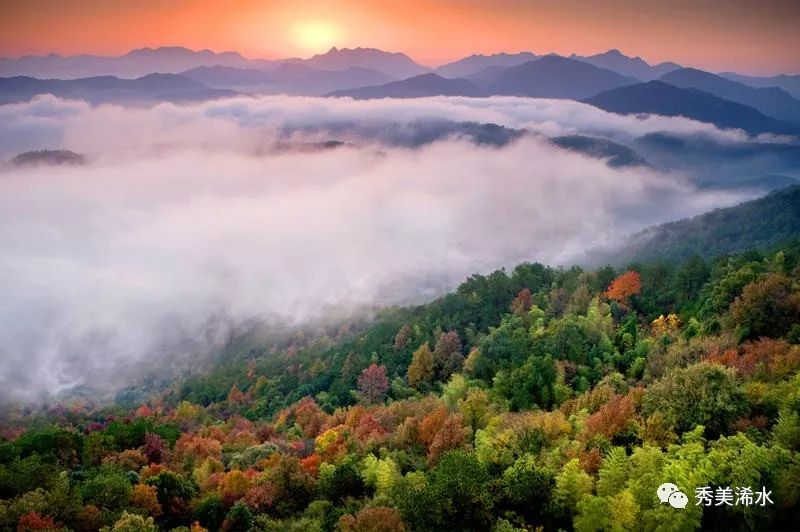 浠水乡村如何发展,黄强胤在新华社文章里说了三点!