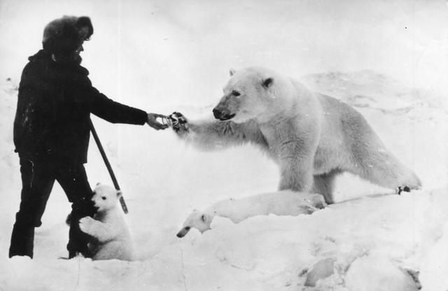 人与动物_镜头下:人与动物的感人催泪瞬间