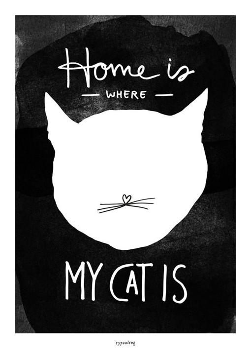 以猫咪为主题的创意海报设计作品_新浪看点