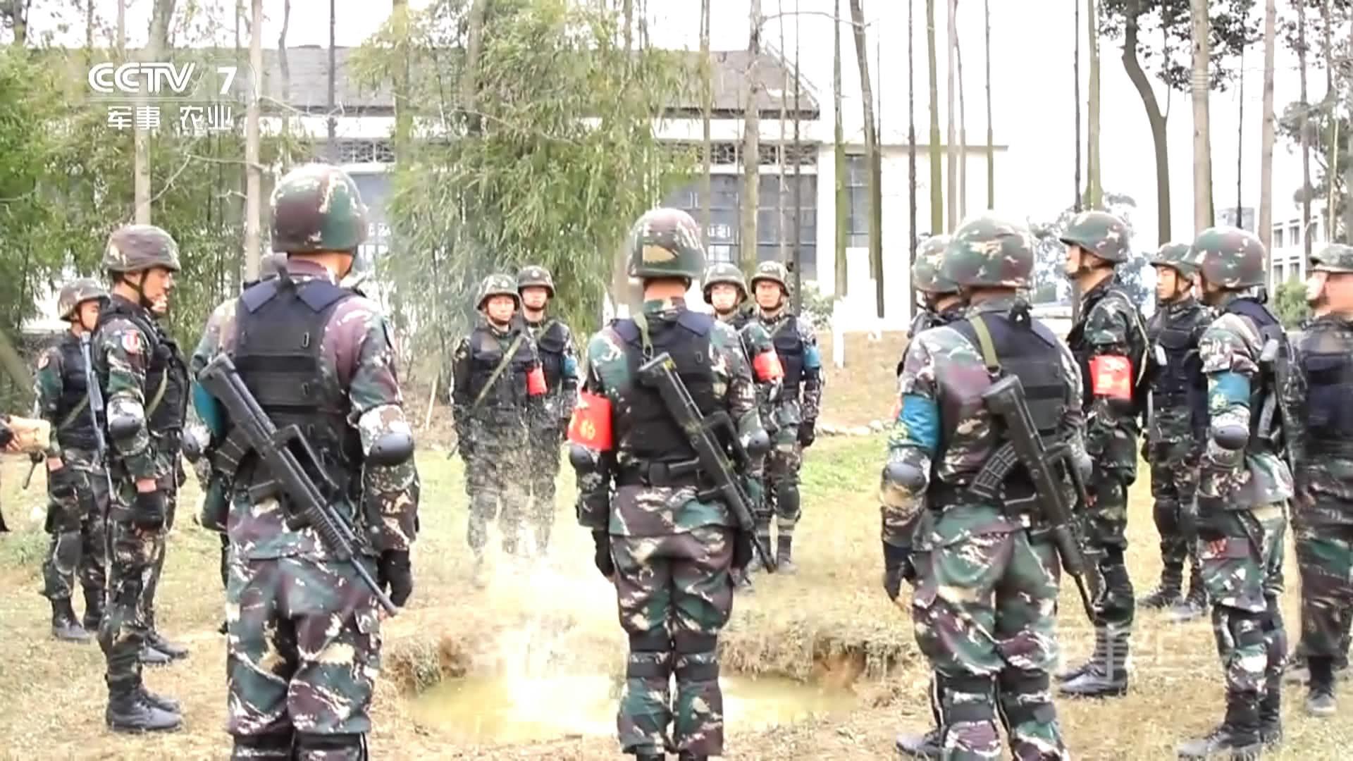 国际雇佣兵组织_国际雇佣兵组织中,为什么没有中国特种兵的身影?居然