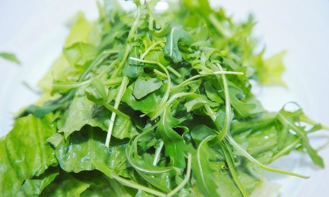 豆瓣菜的栽培,怎样进行采收和留种