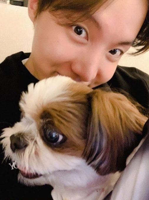 防弹少年团J-HOPE郑号锡与伴侣犬米奇的纪念照