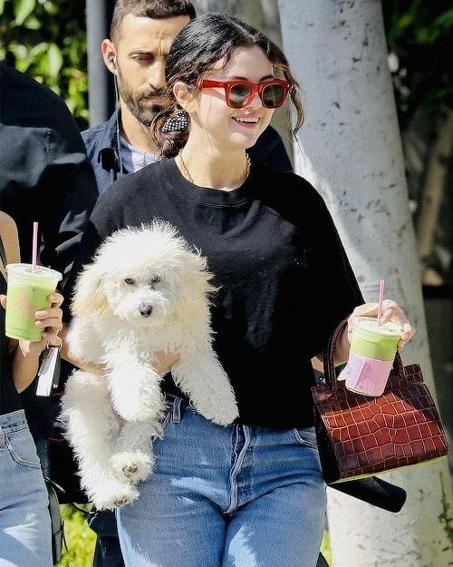 赛琳娜·戈麦斯的抹茶约会狗狗照片是最可爱的