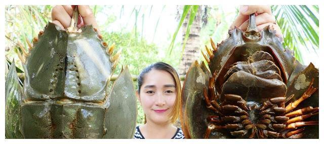 """柬埔寨农村巧妇拿来""""马蹄蟹""""制作美食!网友:这吃法,我不接受"""