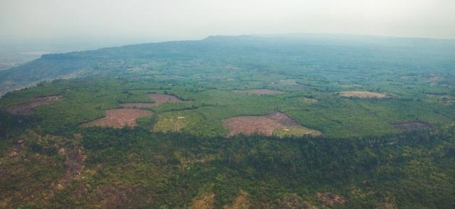 科学家在柬埔寨丛林中发现了一座失落的城市