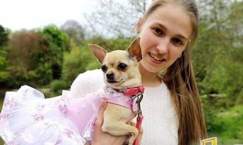 英国20岁女孩痴迷于打扮宠物狗,为狗花费1万英镑买衣服