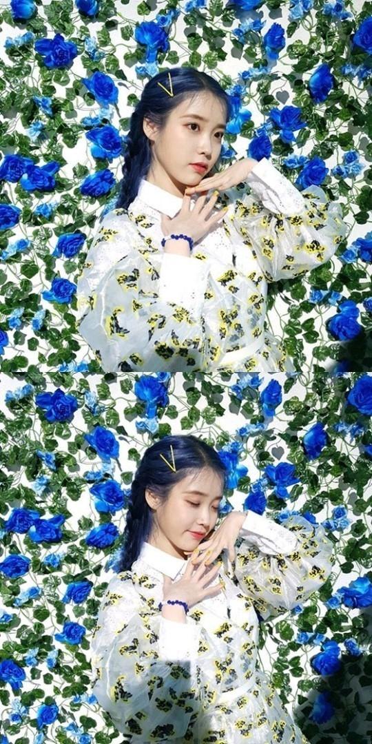 IU向粉丝公开新曲《Blueming》MV拍摄时的样子 蓝色花朵前秀色美貌