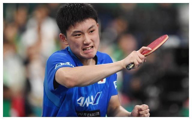 终于赢了!张本智和3-0横扫40岁对手,全场狂吼不止,拯救日乒