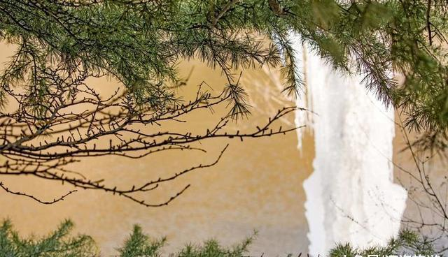 洛陽攝友,拍攝洛陽身邊風景,寫了9首洛陽打油詩