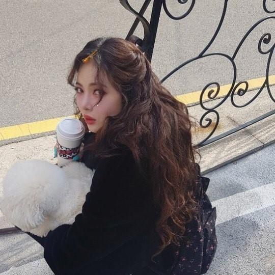 金泫雅上传与爱犬散步照片粉丝赞不绝口:姐姐是公主