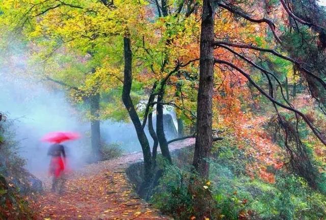 色彩風景天空楓葉水粉畫