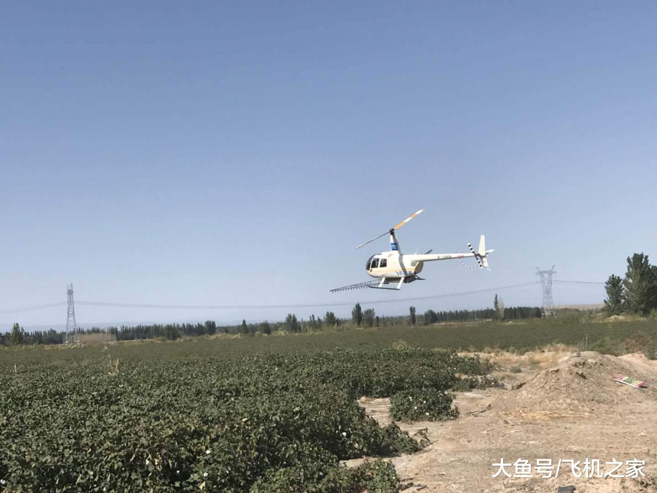 直升机飞往新疆克拉玛依进行棉花脱叶剂喷洒