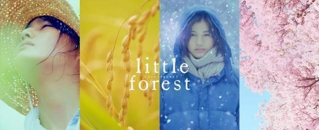 这些适合冬季观看的电影,你确定不来看看吗?