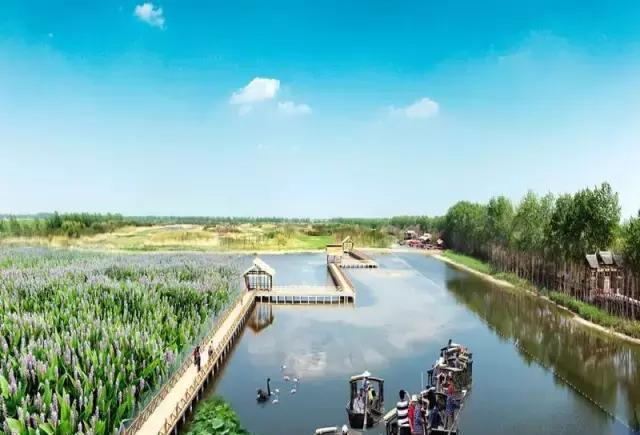 阜阳同性公园_阜阳新增一省级湿地公园,科普与旅游兼备