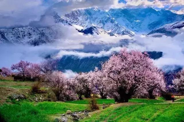 场舞圣地拉萨分解动作_然乌湖,林芝,雅努藏布江大峡谷,桃花沟,羊卓雍措,最后到达圣地拉萨.