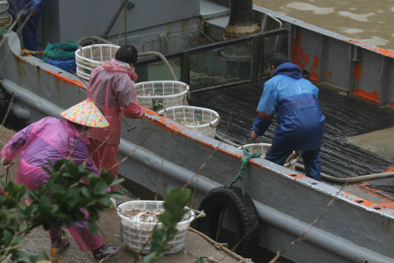 """浙江台州椒江区唯一的镇,只能依靠""""坐船""""才能到达,保留原生态"""