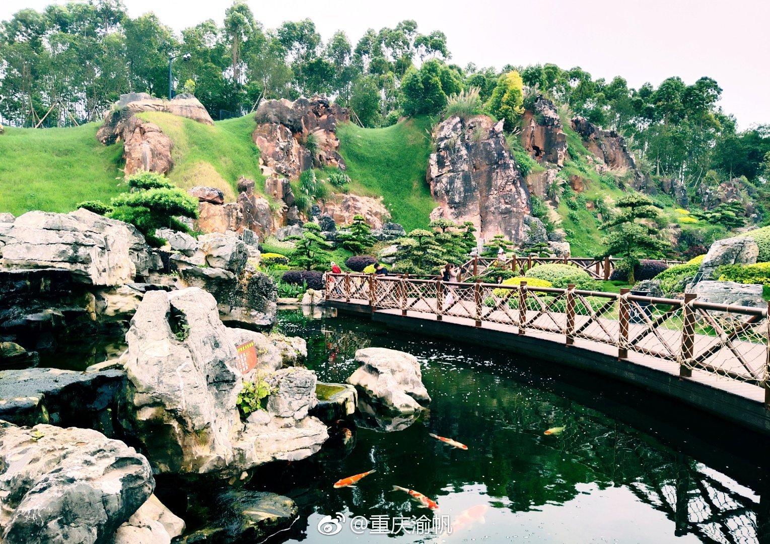 南宁园博园开园_南宁园博园的罗汉松园是世界上第一个与矿山生态修复工程相 ...