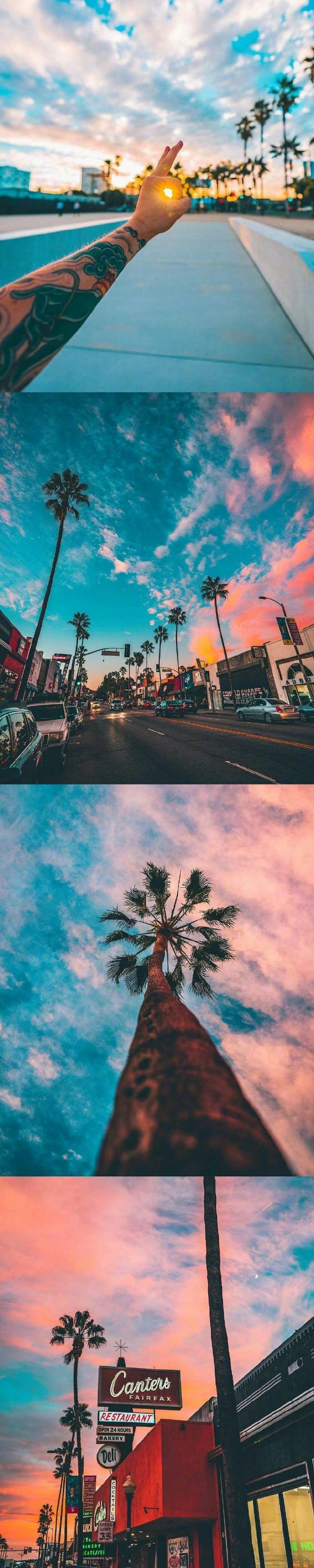 裸囹la9f_想和爱的人去洛杉矶la看椰树