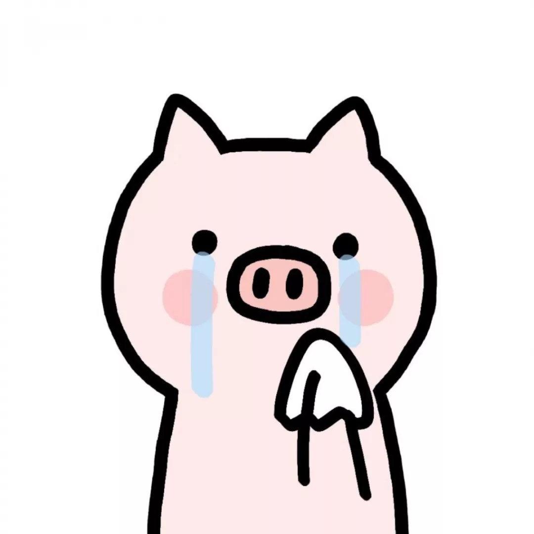 2019猪猪头像 财经头条