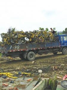 5月8日,成都一处废弃共享单车堆放点,一辆货车将报废单车装载运走。