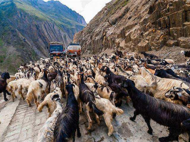 世界最惊险悬崖公路,海拔3500米高 游客:走路都软脚!