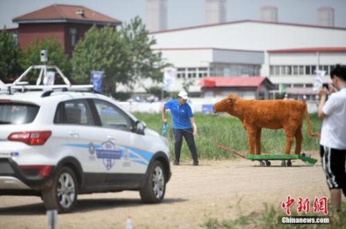 资料图:无人驾驶汽车。中新社记者 佟郁 摄