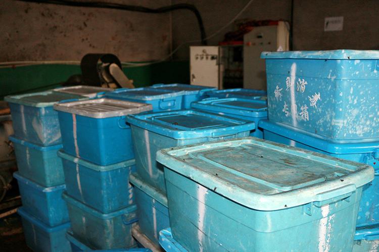 餐具塑料箱上随处可见很众苍蝇。