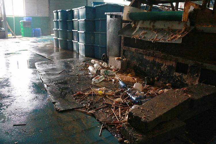 涉事消毒餐具厂浑水横流,气味刺鼻。