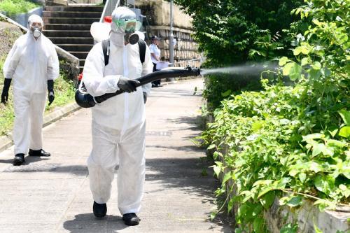 香港食物环境卫生署人员在长洲使用雾化处理方法,在民居附近100米范围内树丛杀灭成蚊。图片来源:香港特区政府新闻网