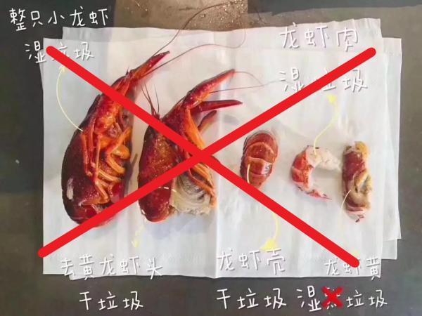 """来源不明的""""小龙虾身后事分类图""""是错误的。 网络图"""
