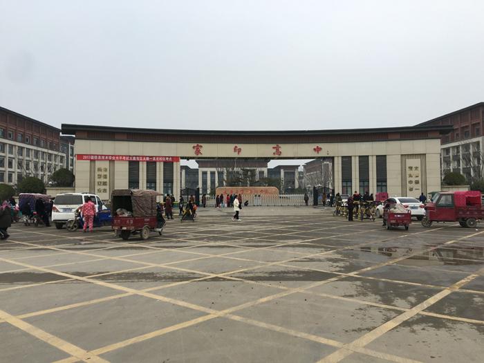 许家印省亲背后: 县政府抢修道路 冬夜路旁植绿化