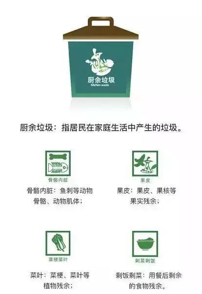 郑州实施垃圾分类时间确定!问题来了,你会扔垃圾吗?