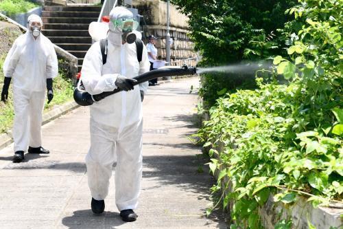 資料圖:工作人員使用霧化處理方法,在民居附近樹叢殺滅成蚊。圖片來源:香港特區政府新聞網