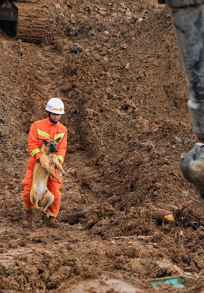 救援人員在現場指揮搜救犬開展救援。