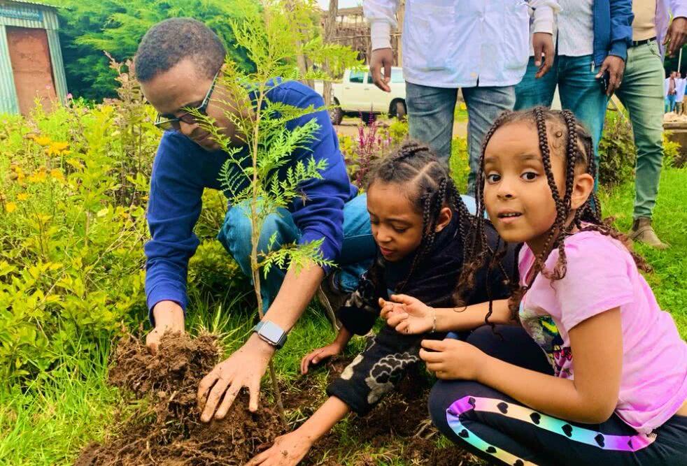 12小时植树3.53亿棵 埃塞俄比亚要改写世界纪录