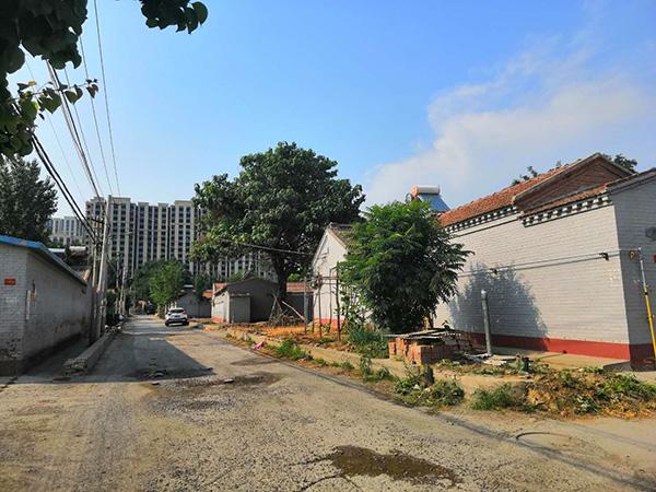村长张玉称,王家村即将整体搬迁进楼房,65岁的侯振林看不到了。
