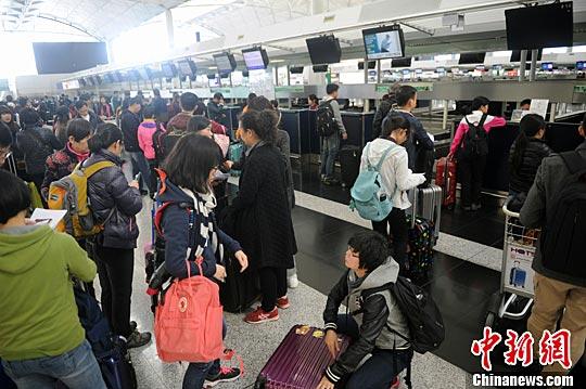 资料图:2016年2月6日,香港国际机场柜台排队的游客。中新社记者 谭达明 摄