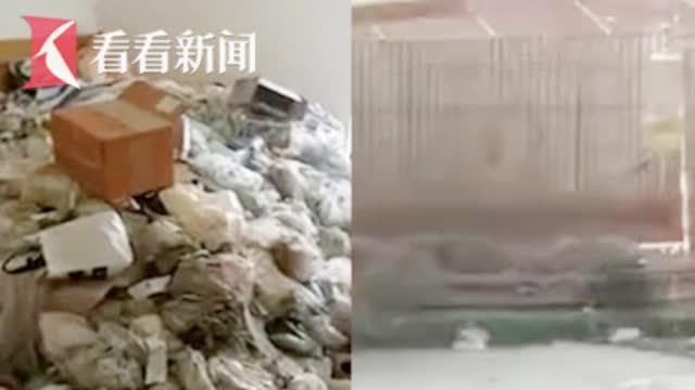 女租客退房留下满屋垃圾和一只死猫清出24车垃圾