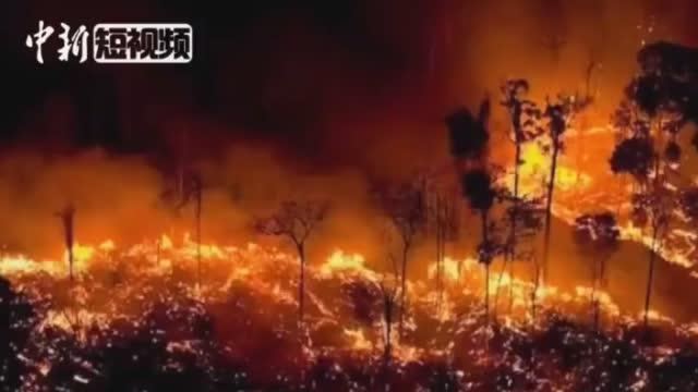 亚马逊雨林大火已持续超10天浓烟让城市白天变黑夜