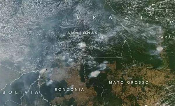 亚马逊雨林烧了仨礼拜 这群政客吵起来了