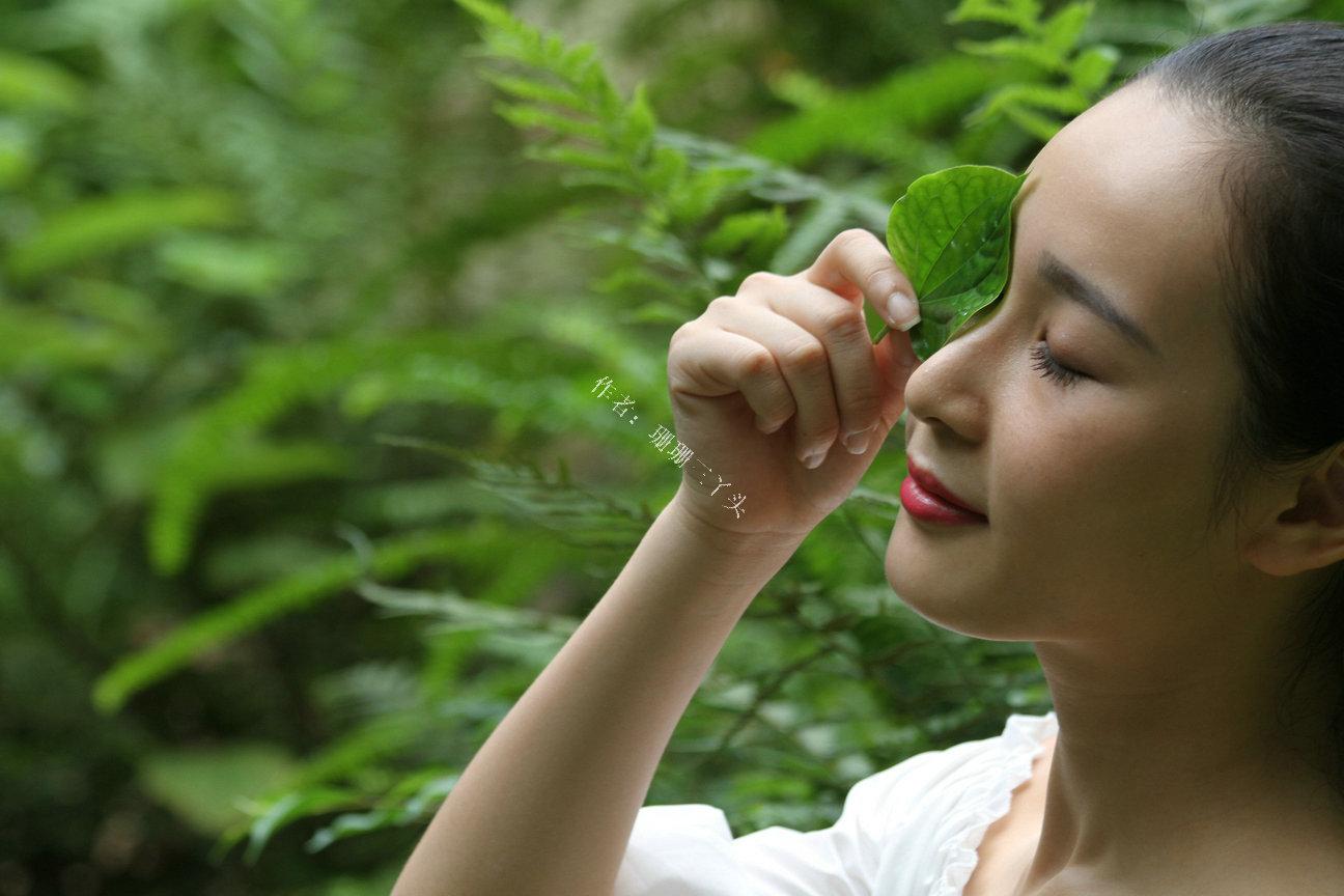 """广州越秀山有600年前""""韩国""""古典园林,人物写真拍摄地,无门票"""