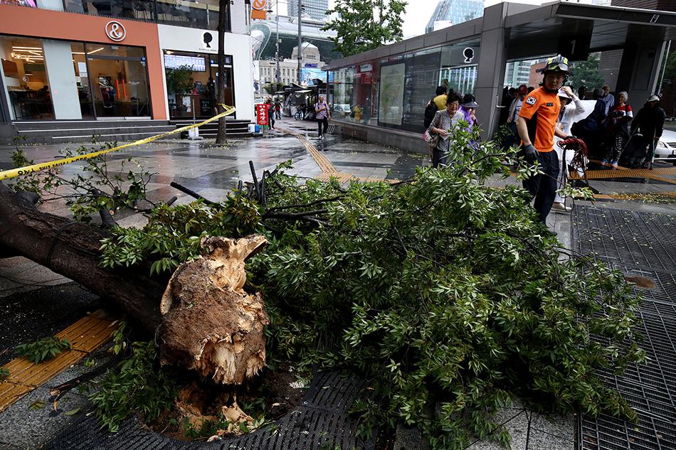 双台风分别扑向韩日 玲玲已致韩国3死12万户断电