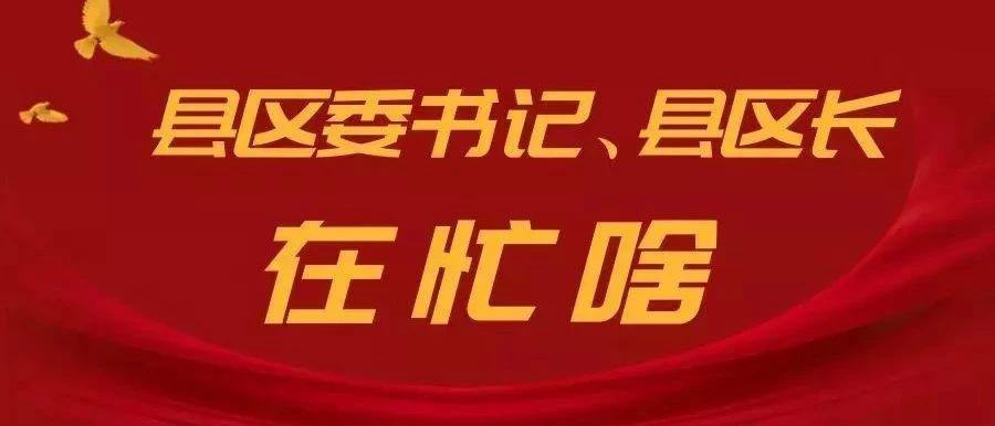 萍乡各县区委书记、县区长这一周在忙啥?
