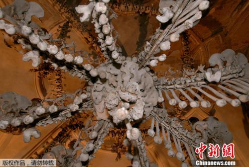 http://www.alvjj.club/guojiguanzhu/142941.html