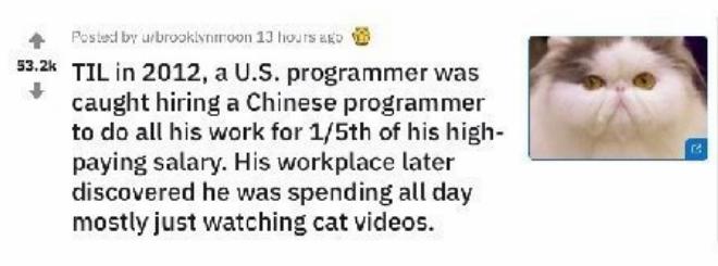 操作太骚!美国程序员把活外包给中国人,不用干活白拿140万工资